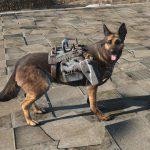 light dog armor dogmeat