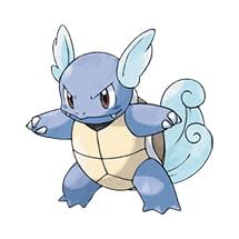 008 Pokemon Wartortle