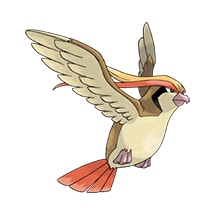 018 Pokemon Pidgeot