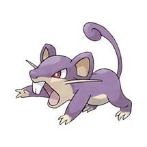 019-Rattata