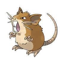 020 Pokemon Raticate