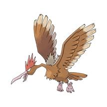 022 Pokemon Fearow