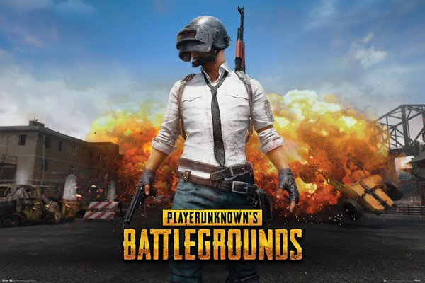 Плакат PlayerUnknown`s Battlegrounds: Playerunknown